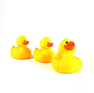 Rubber Ducks Art Print by Photo Researchers, Inc.