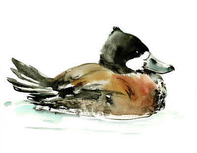 Painting - Ruddy Duck by Suren Nersisyan