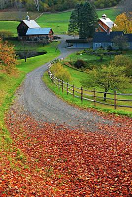 Photograph - Rural Autumn by James Kirkikis