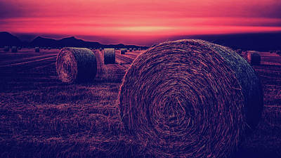 Photograph - Rural Sunset by Pixabay