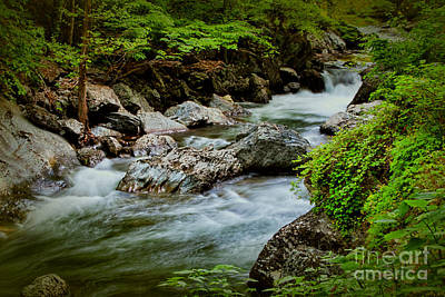 Photograph - Rushing Waters by Dave Bosse