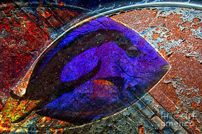 Digital Art - Rusted Fish by Georgianne Giese