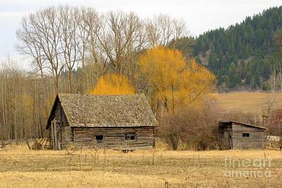 Photograph - Rustic Past by Frank Townsley