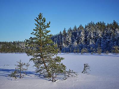 Photograph - Saari-soljanen by Jouko Lehto