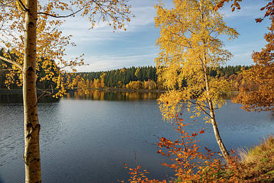 Photograph - Saegemuellerteich, Harz by Andreas Levi