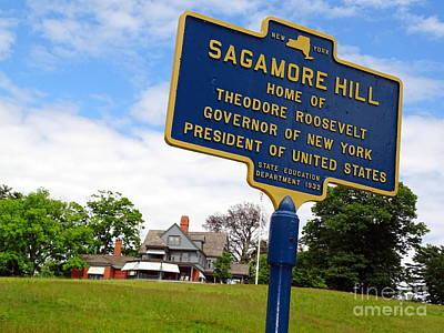 Photograph - Sagamore Hill by Ed Weidman