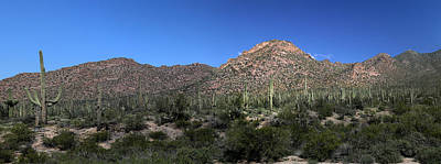 Photograph - Saguaro National Park Panorama 2  by Mary Bedy