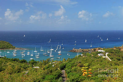 Photograph - Sailboats by Gary Wonning