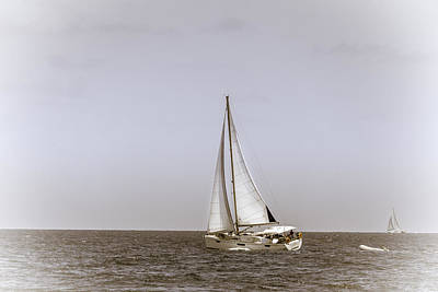 Photograph - Sailing In The Caribbean by Alexey Stiop