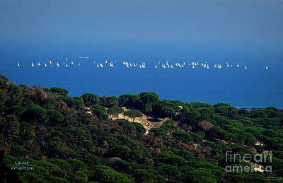 Photograph - Sailing The Mediterranean by Lainie Wrightson