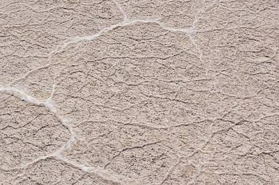 Photograph - Salt Flat Detail by Sandy Taylor