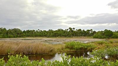 Photograph - Salt Marsh Low Tide by Carol Bradley