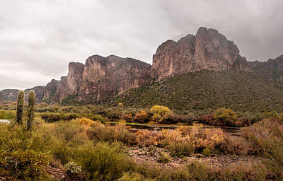 Photograph - Salt River Scenery by Tam Ryan
