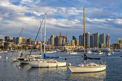 Popstar And Musician Paintings Royalty Free Images - San Diego Harbor Royalty-Free Image by Peter Tellone