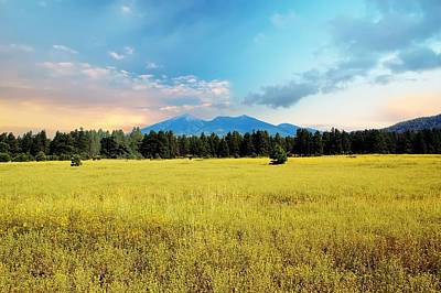 Flagstaff Wall Art - Photograph - San Francisco Peaks  by Kelly Wade