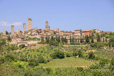 Photograph - San Gimignano With Vineyards by Patricia Hofmeester