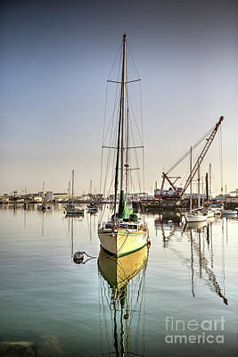 Photograph - San Pedro Waterfront by David Zanzinger