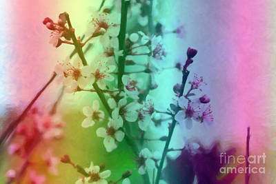 Digital Art - Sand Cherry Blossoms by Donna L Munro