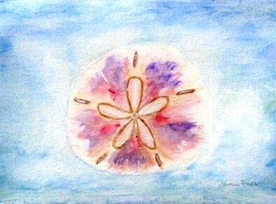 Painting - Sand Dollar by Jamie Frier