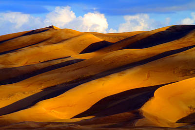 Photograph - Sand Dune Curves by Scott Mahon
