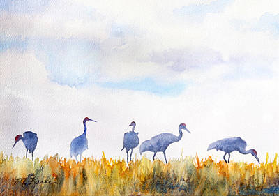 Sandhill Skyline Art Print