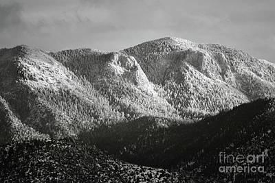 Photograph - Sandia Mountains Snow Forest Landscape by Andrea Hazel Ihlefeld