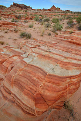 Photograph - Sandstone Stripes In Valley Of Fire by Ray Mathis