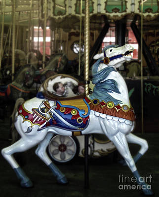 Photograph - Santa Cruz Boardwalk Carousel Horse by Gregory Dyer