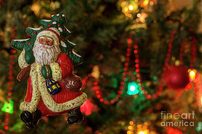 Photograph - Santa Fun 3 - Christmas Greetings Card by Wendy Wilton
