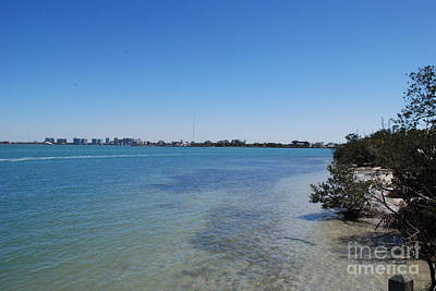 Photograph - Sarasota Bay by Gary Wonning
