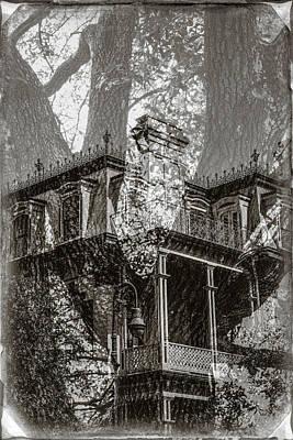 Savannah Fine Art . Savannah Old Trees Photograph - Savannah House And Tree 1108 by Bob Neiman