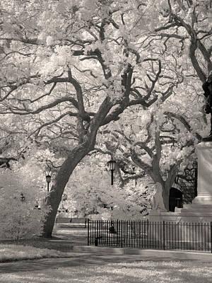 Savannah Infrared Photograph - Savannah Square Ir 1087 by Bob Neiman