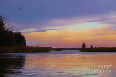 Photograph - Savannah Sunset by Keri West