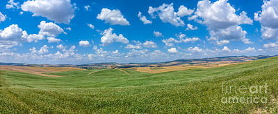 Pineapple - Scenic Tuscany landscape with rolling hills in Val dOrcia, Ital by JR Photography