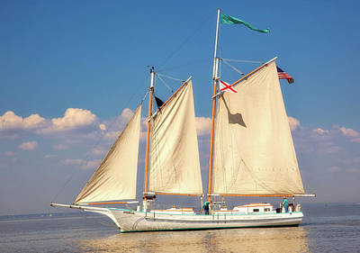 Photograph - Schooner On Mobile Bay by L O C