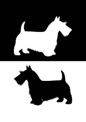 Scottish Dog Digital Art - Scottish Terrier by Water color Art by TheJollyMarten