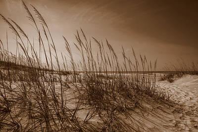 Photograph - Sea Breeze by John Harding