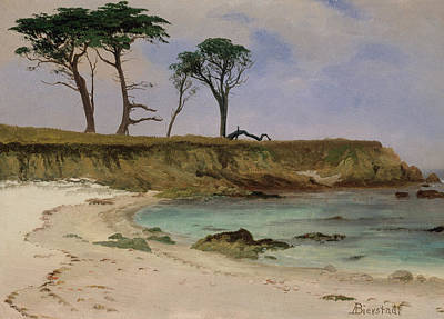 Painting - Sea Cove by Albert Bierstadt