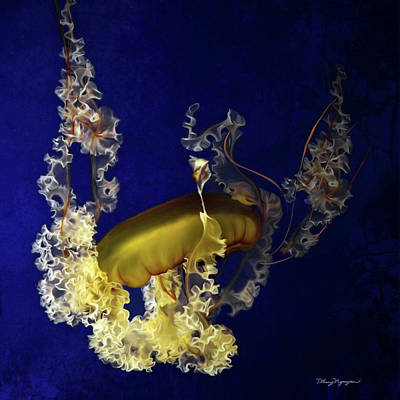 Digital Art - Sea Nettle Jellies by Thanh Thuy Nguyen