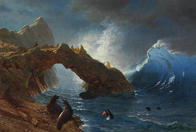 Seals On The Rocks Art Print by Albert Bierstadt