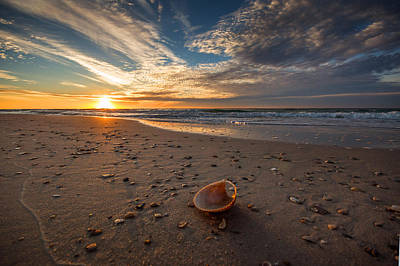 Photograph - Seashell By The Seashore by Michael Thomas