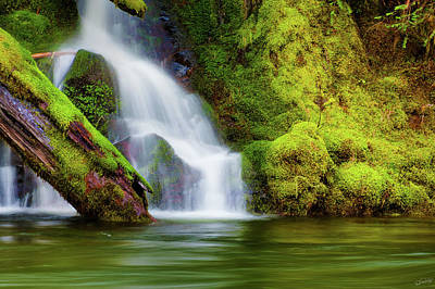 Photograph - Whte Cascade by Dee Browning
