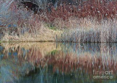Photograph - Seasons Edge by Christian Mattison