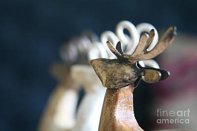 Photograph - Seasons Greetings  by Lynn England