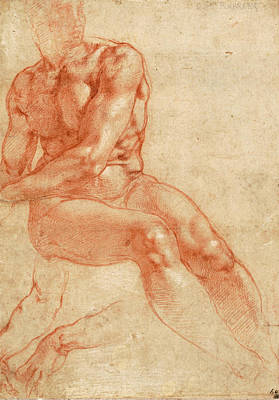 Europe Drawing - Seated Young Male Nude And Two Arm Studies by Michelangelo Buonarroti