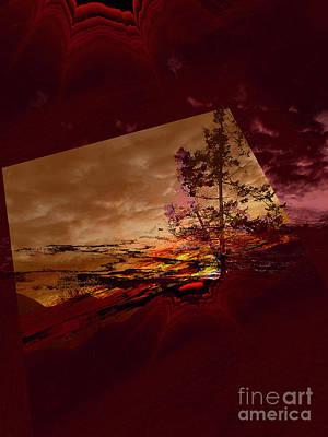 Photograph - Sechelt Tree 3 by Elaine Hunter
