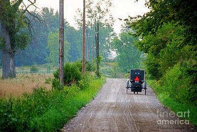 Photograph - September Buggy by David Arment