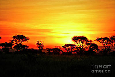 Photograph - Serengeti Sunset by Bruce Block