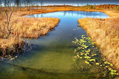 Photograph - Seven Ponds Nature Center Tree Top Pond  by LeeAnn McLaneGoetz McLaneGoetzStudioLLCcom