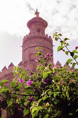 City Scenes Photograph - Seville - Torre Del Oro  by Andrea Mazzocchetti